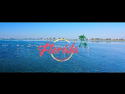 Playlist Music Tune Florida Sunshine